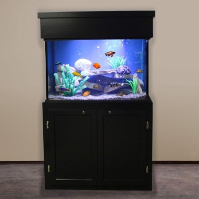 Enamel Backgrounds - Aquarium Front