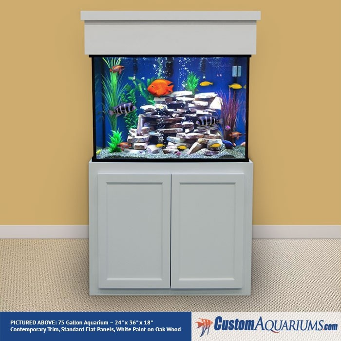 "75 Gallon* Glass Aquarium - 24""H x 36""L x 18""D"