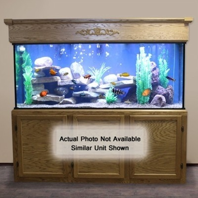 240 gallon aquarium custom glass fish tank custom. Black Bedroom Furniture Sets. Home Design Ideas