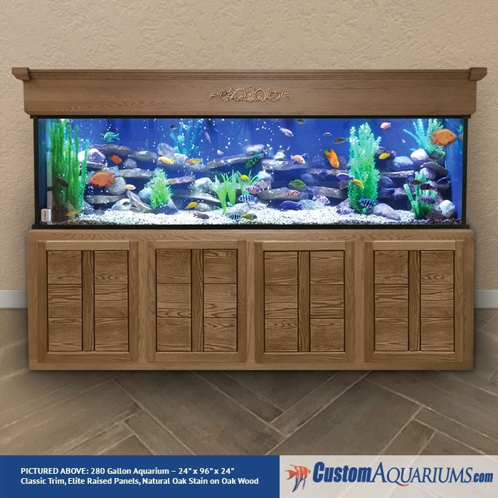 280 Gallon Aquarium Custom Glass Fish Tank Custom Aquariums