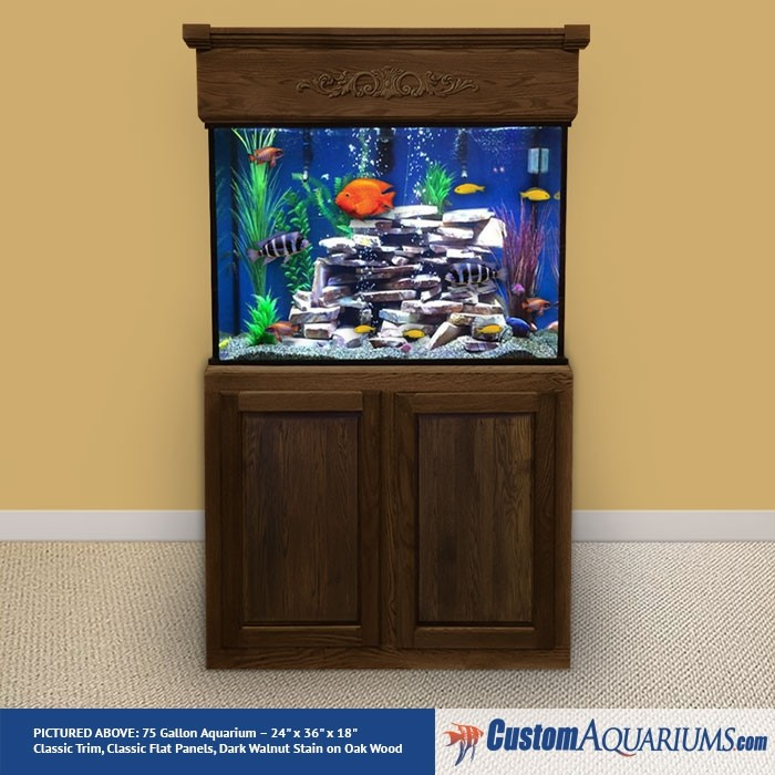 Up to 90 Gallon Maintenance / Decor Package