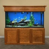 "180 Gallon* Glass Aquarium - 30""H x 72""L x 18""D"