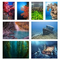 Aquarium Picture Backgrounds