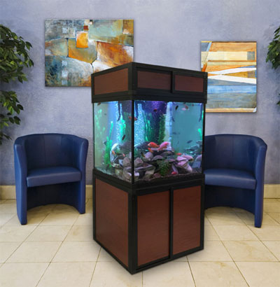 Hexagon pentagon square aquariums for Square fish tank