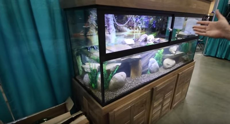 Custom Aquariums with DIY