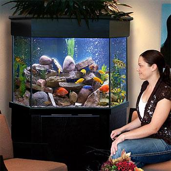 Pentagon Aquariums Corner Aquariums Custom Aquariums