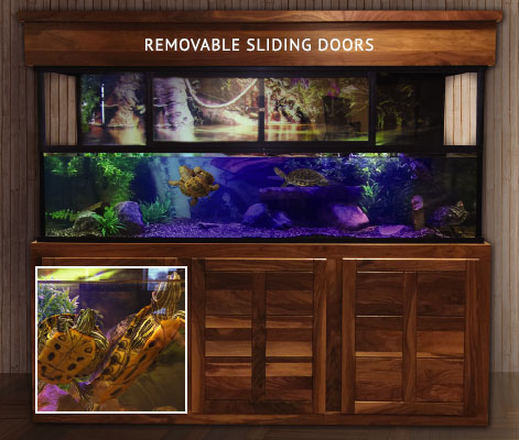 Turtle Aquariums & Amphibious Aquariums