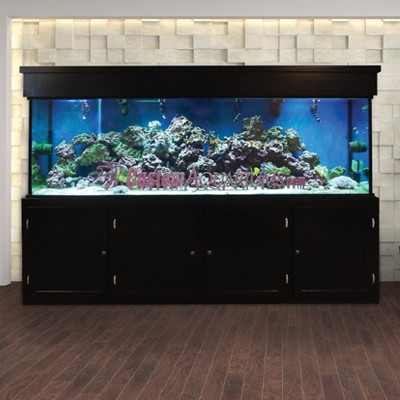 aquariums for hotels