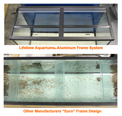 glass aquariums frame closeup