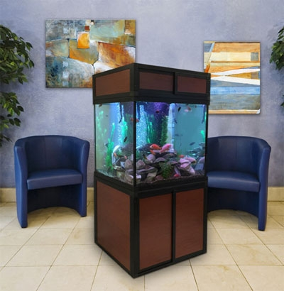 Square Aquariums for Hospitals