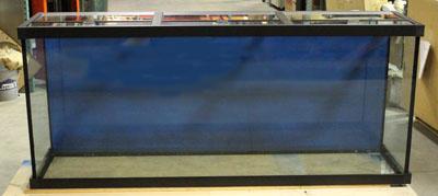 Lifetime glass aquariums for Aquarium fish calculator