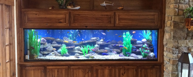 aquarium canopies custom tank