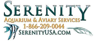 serenity saltwater aquarium services